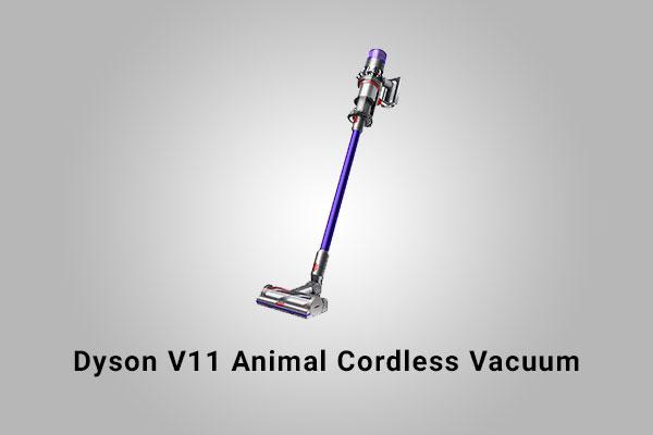 Dyson V11 Animal Review