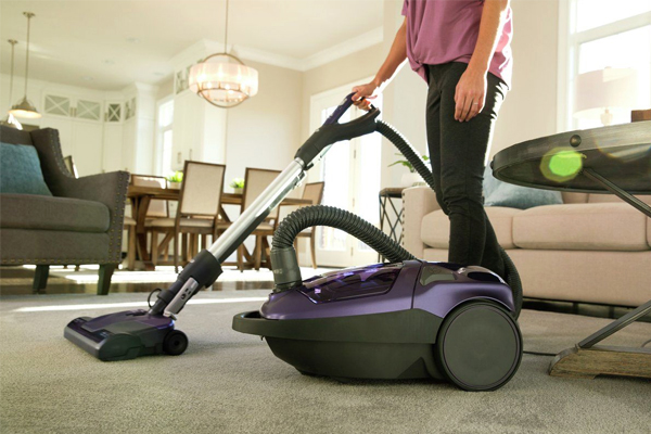 Kenmore 81614 600 Series Bagged Canister Vacuum Cleaner
